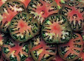 Tomato Black Seaman