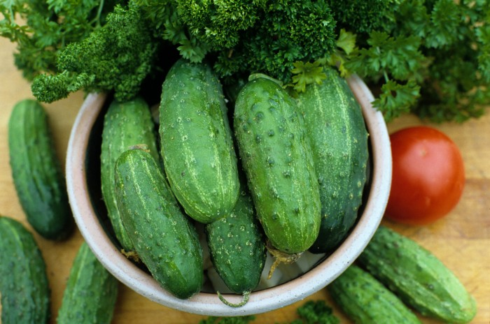 Cucumber 'Marketmore 76' Slicing