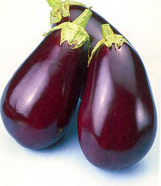 Eggplant Dusky