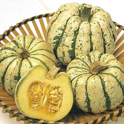 Squash (Winter) 'Sweet Dumpling' Acorn