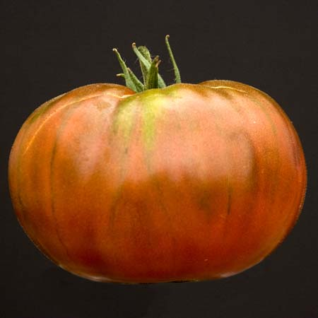 Heirloom Tomato 'Paul Robeson'
