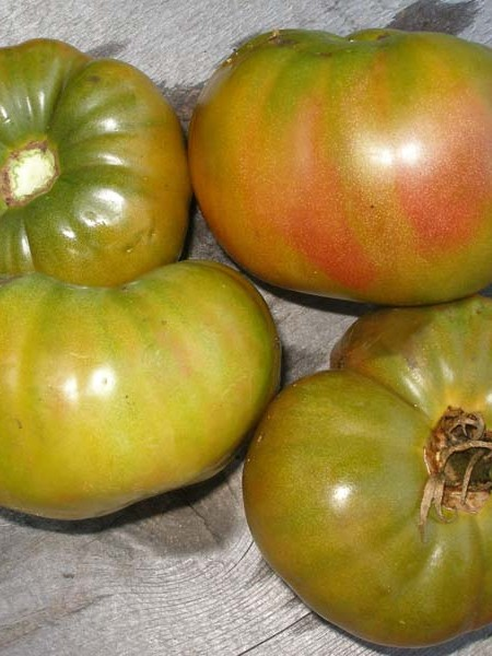Heirloom Tomato 'Ananas Noire'