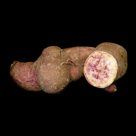 Sweet Potato 'Purple'