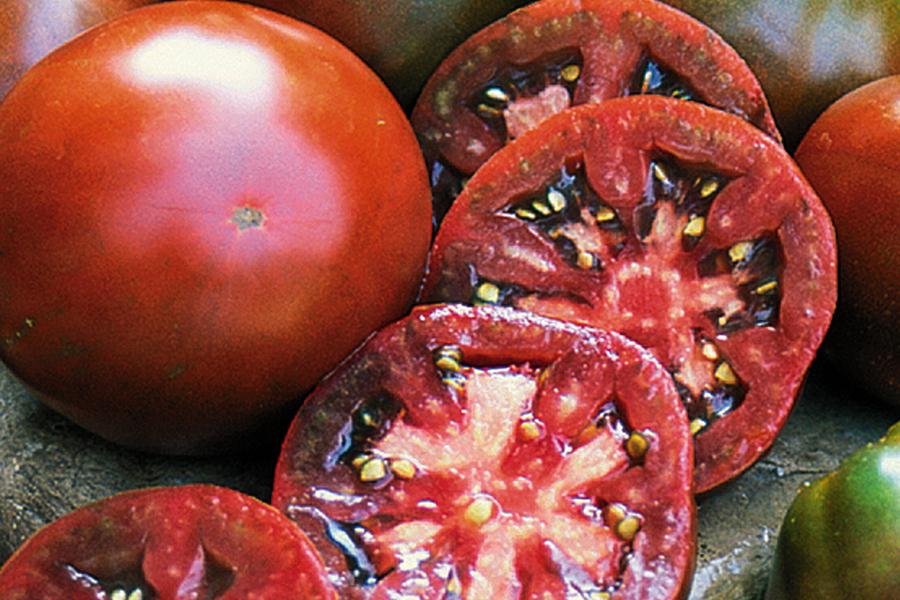 http://loghouseplants.com/plants/wp-content/uploads/2012/02/Tomato_JapaneseBlackTrifeleZ.jpg