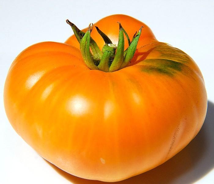 Heirloom Tomato 'Persimmon'