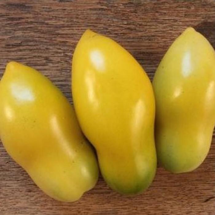 Heirloom Tomato 'Yellow Icicle'