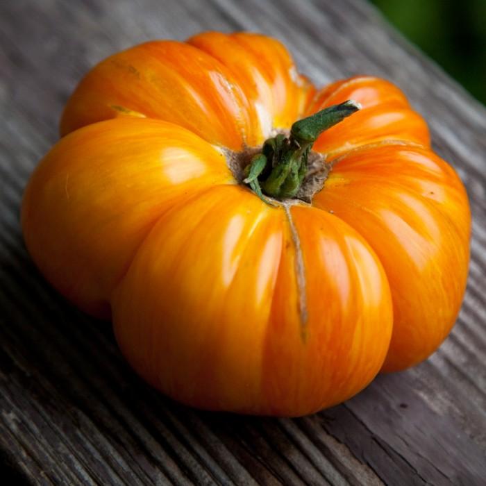 Heirloom Tomato 'Copia' Mighty 'Mato