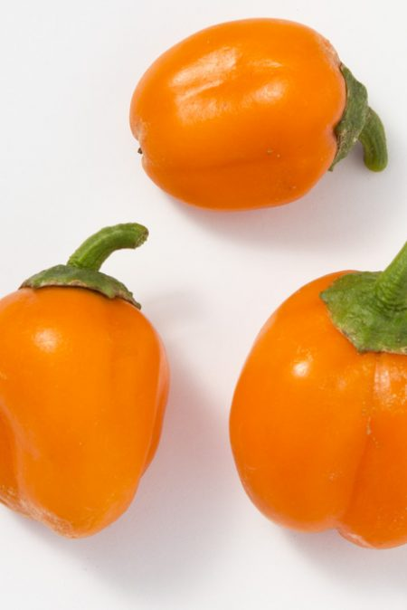 Pepper (Sweet) 'Lunchbox Orange Snack'