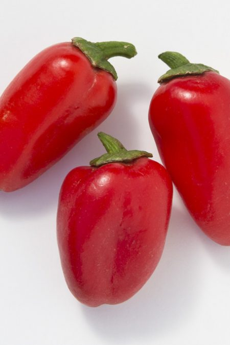 Pepper (Sweet) 'Lunchbox Red Snack'