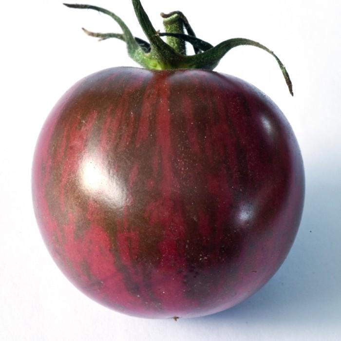 Tomato 'Bumblebee™ Purple' Cherry Tomato