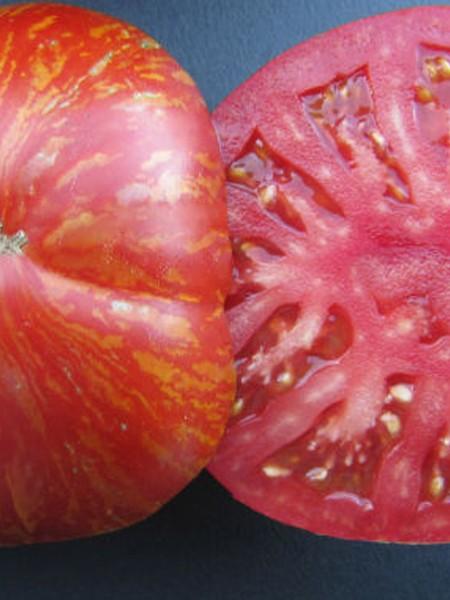 Tomato 'Wild Boar Farms Hybrid Solar Flare'