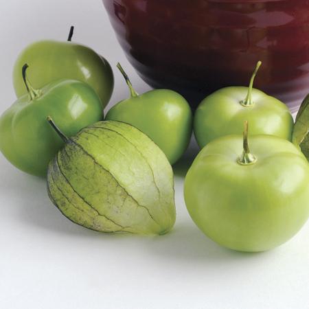 Tomatillo 'Toma Verde'