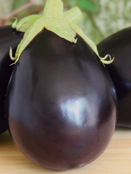 Eggplant 'Early Midnight'