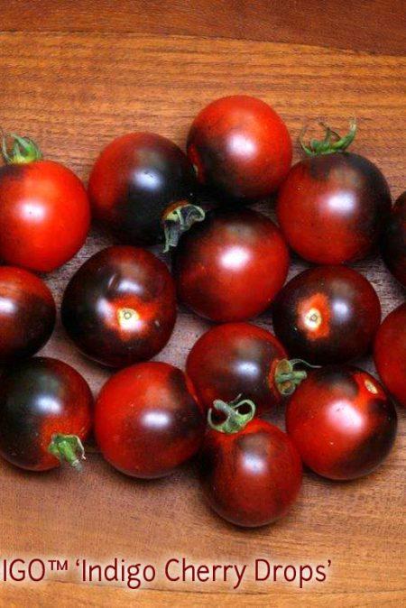 OSU INDIGO10 Cherry Drops3