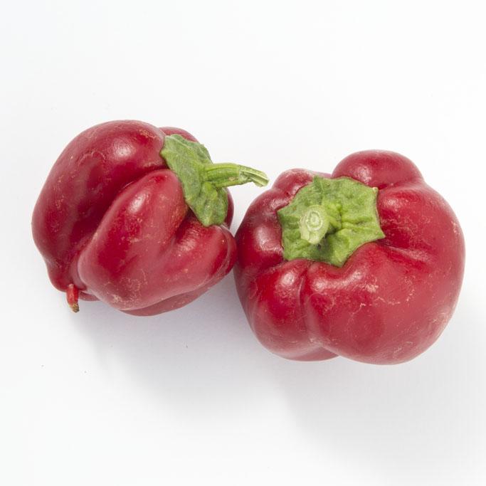 Pepper (Sweet) 'Wonder Bell' Bell