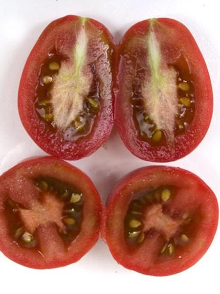 Tomato 'Evan's Purple Pear'