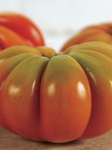 Tomato Genuwine-web