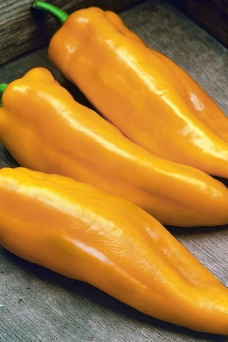 Pepper (Sweet) 'Lively Italian Sweet Yellow'