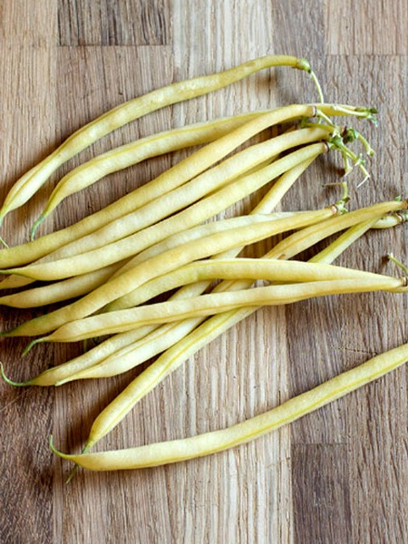 Heirloom Bean 'Pauldor' Filet Bean