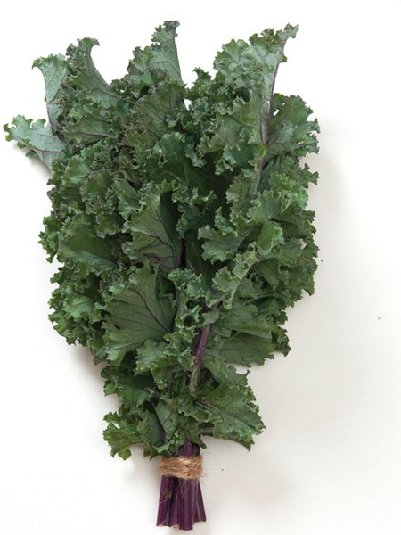 FW Kale 'Olympic Red'