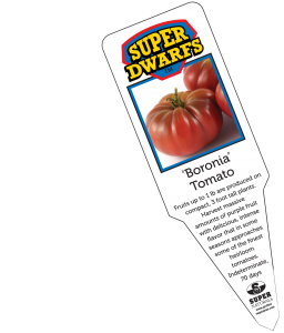 Boronia Tomato Label