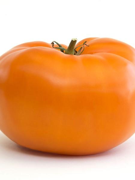 Heirloom Tomato 'Brandywine Orange'