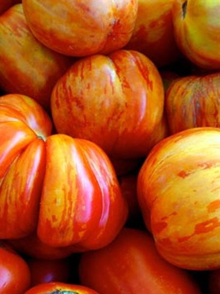 Heirloom Tomato 'Old German'