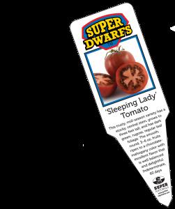 Sleeping Lady tomato label