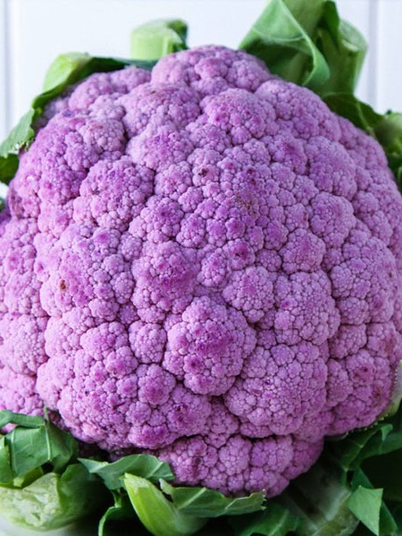 Cauliflower 'De Purple'