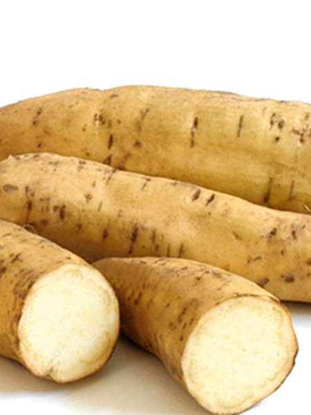 Sweet Potato 'White Yam'