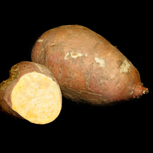 Sweet Potato 'Ayers Creek'