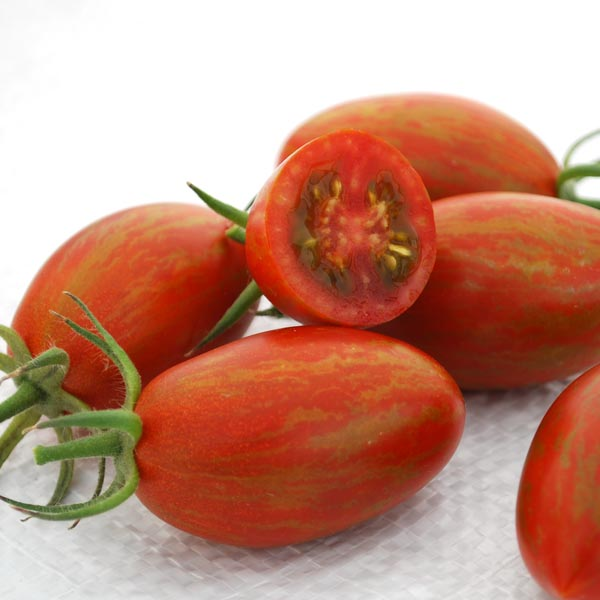 Tomato 'Bronze Torch' F1 Cream of the Crop Julienne Cherry Tomato