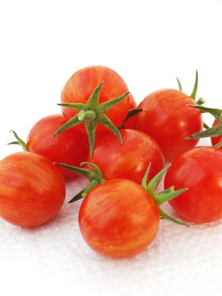 Tomato 'Sparky XSL' F1 Cream of the Crop Cherry Tomato