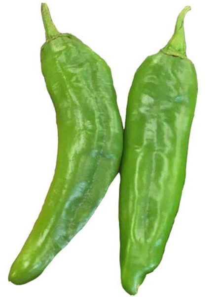Heirloom Pepper (Sweet) 'Hatch NM 6-4'