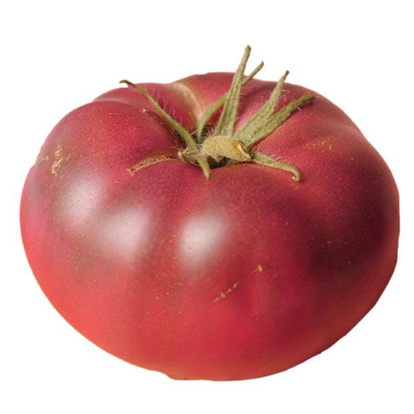 Tomato 'Aunt Ginny's' purple