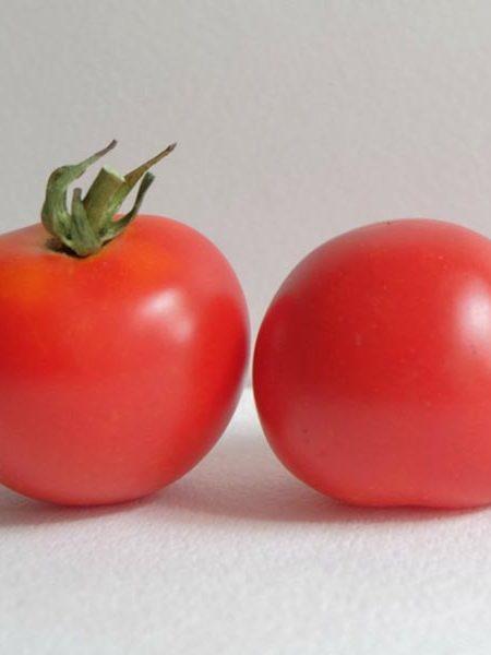 Tomato 'Red Racer' Cocktail Tomato