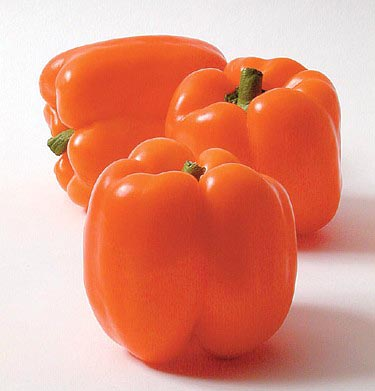 Pepper (Sweet) 'Orange Sun' Bell