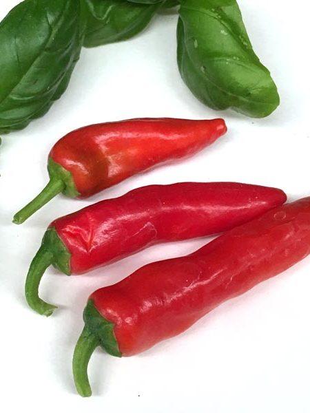 Pepper (Hot) 'Cayennetta'