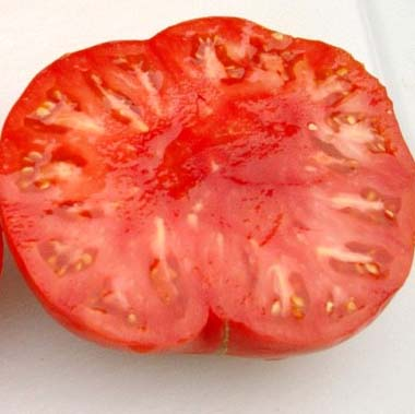 Heirloom Tomato 'Big Zac'
