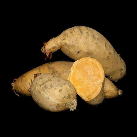 Sweet Potato 'Centennial'