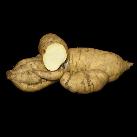 Sweet Potato O'Henry'