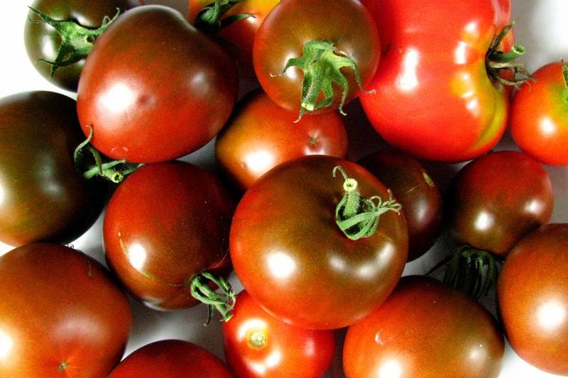 Heirloom Tomato 'Black Prince'