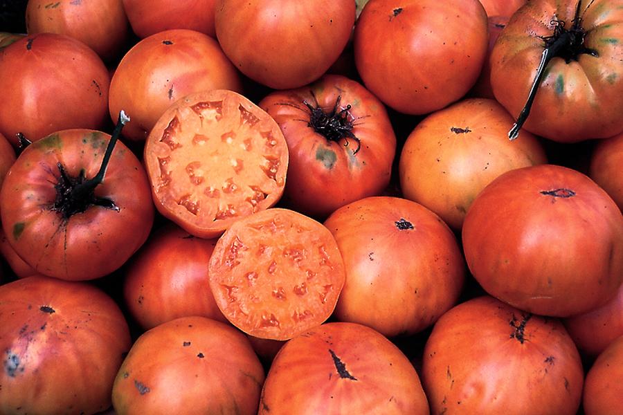 Heirloom Tomato 'Kellogg's Breakfast'