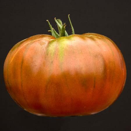 Heirloom Tomato 'Paul Robeson'