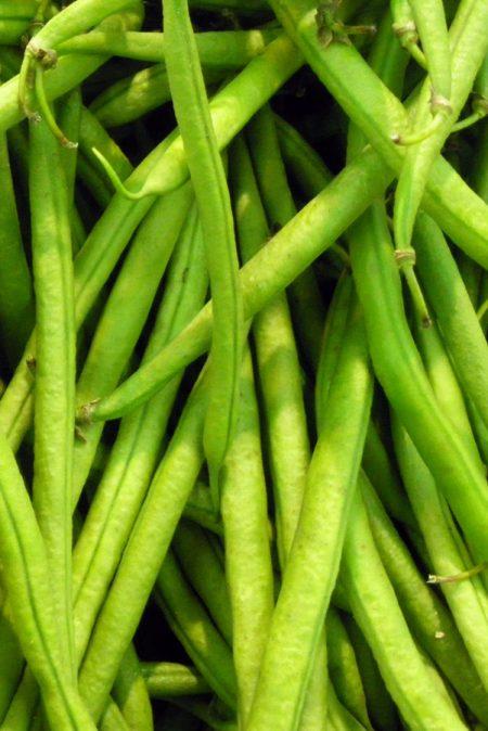 Heirloom Bean 'Malibu' Pole Bean