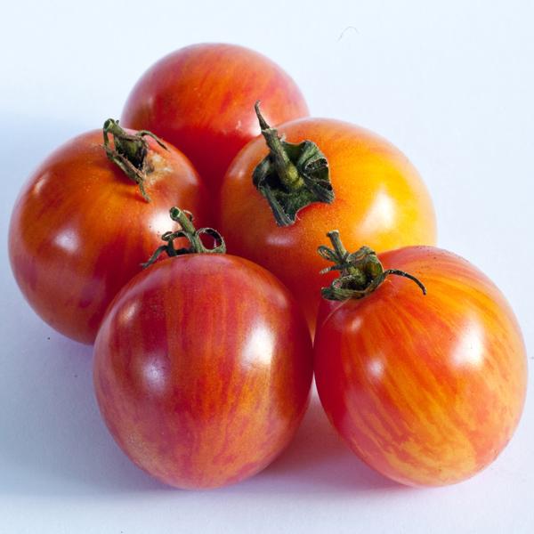 Tomato 'Bumblebee™ Sunrise' Cherry Tomato