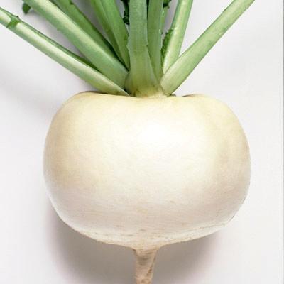 Turnip 'Just Right'