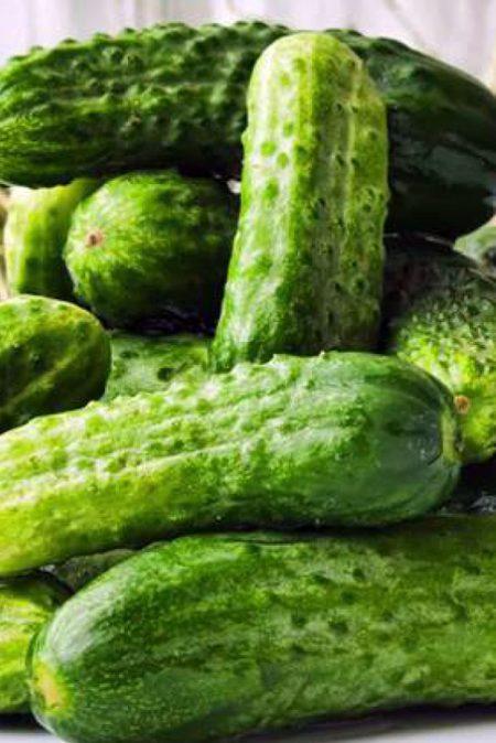 Cucumber 'Petipikel' Pickling