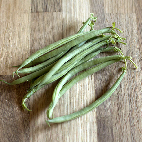 Heirloom Bean 'Nickel' Filet Bean