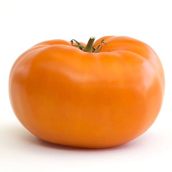 Heirloom Tomato 'Brandywine Orange'